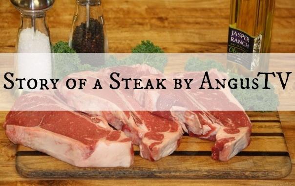 Story of a Steak